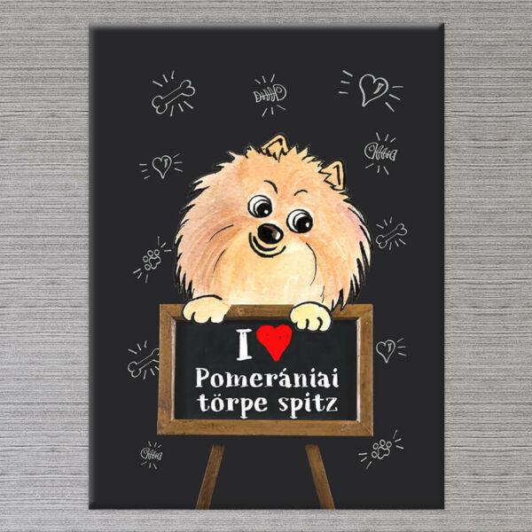 Kutyás Vászonkép Pomeraniai Torpe Spitz - 50x40 cm
