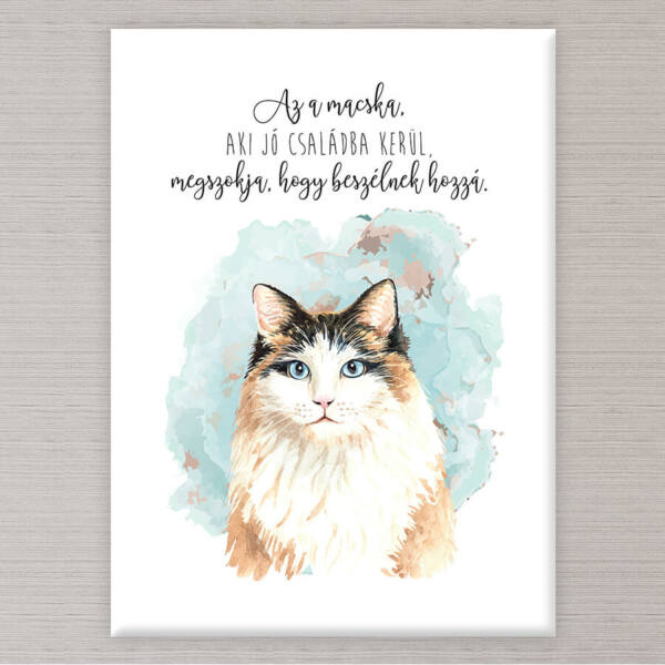 Macskás Vászonkép - 50x40 cm