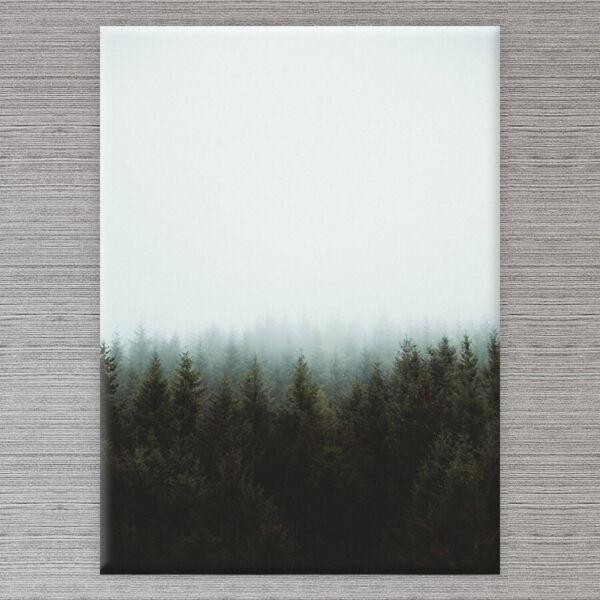 vászonkép fenyőfák erdő