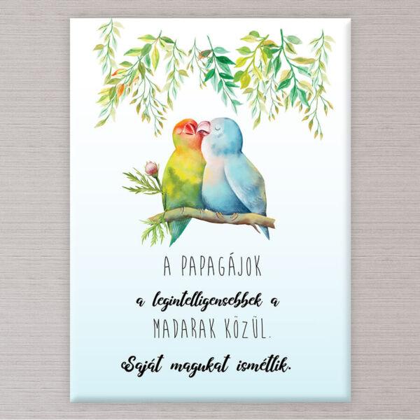vászonkép papagáj